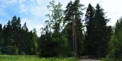 Фотографии и отзывы о коттеджном поселке «Фаворит» (Наро-Фоминский р-н МО)