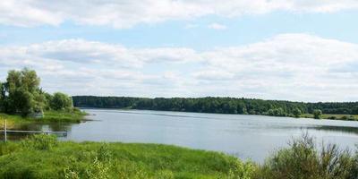 Фотографии и отзывы о коттеджном поселке «Костинский лес» (Раменский р-н МО)