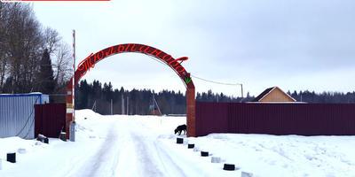 Фотографии и отзывы о коттеджном поселке «Тюльпаново» (Волоколамский р-н МО)