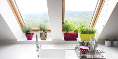 Как подобрать растения для кухни