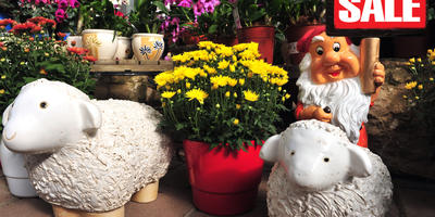 7 горячих распродаж товаров для дачи и сада