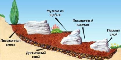 Альпийская горка своими руками – сложно, но можно