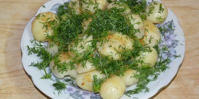 Молодая картошечка с уропом.