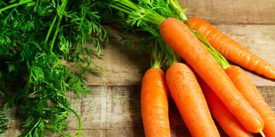 Когда и как собирать морковь