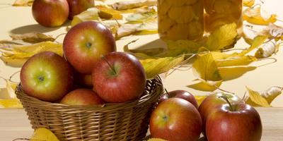 12 беспроигрышных способов заготовки яблок на зиму