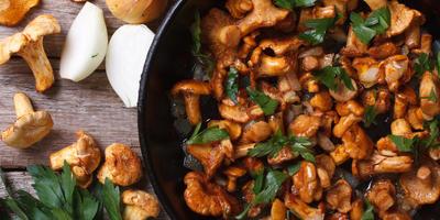 Не ждите милостей судьбы, жарьте на зиму грибы!