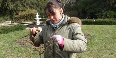 Сезонные работы в саду и огороде: конец февраля - начало марта