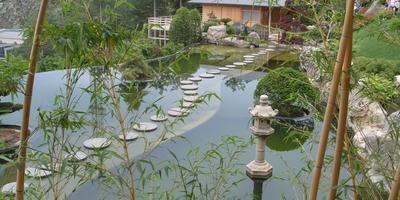 Японский сад парка ЛОК «Айвазовское» (Крым)