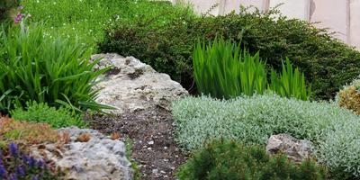 Немного теории: основные принципы растительной композиции