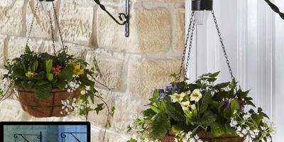 Свет в саду: 7 интересных идей