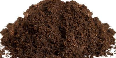 7 компонентов, которые никогда не следует класть в компост