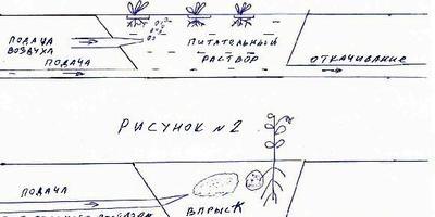 Гидропоника, малообъемная культура, капельный полив и другие передовые технологии в растениеводстве