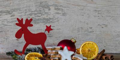 Рождественский олень - иноземный гость, поселившийся в наших домах