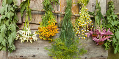 """Как лучше """"огород городить"""": идеи и советы от практиков"""