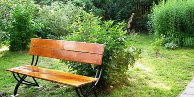 Скамейки и лавочки - уютные обитатели сада