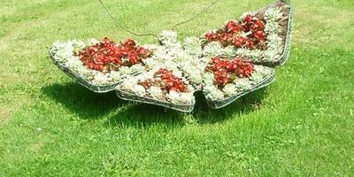 Самые необычные идеи для садовых клумб.