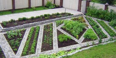 Аккуратный декоративный огород