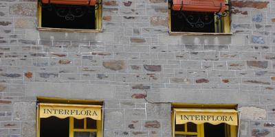 Окна и стены разноцветных средневековых домиков Доль-де-Бретани