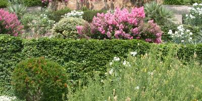 Как сделать сад при перепадах рельефа?