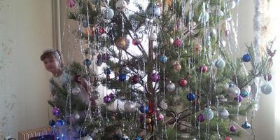 Наше Новогоднее чудо
