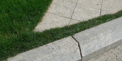 Необычное решение - трава перед дорожкой