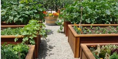 Прекрасное решение для маленькой дачи – мобильный огород