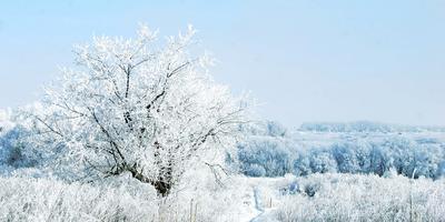 Фото-тур: зимние узоры 2014