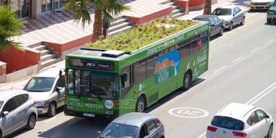 В Испании разбили сад на крыше рейсового автобуса