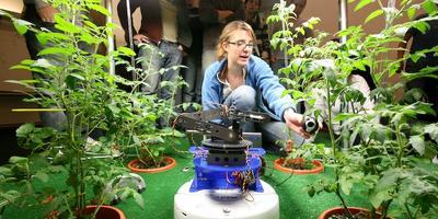 В Калифорнии изобрели робота-овощевода