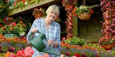 Семейная пара из Англии стала знаменита на весь мир своим невероятным садом