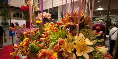 Открылась самая большая флористическая выставка Канады «Canada Blooms»