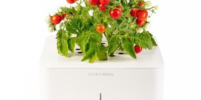 6 умных устройств для выращивания зелени на подоконнике