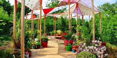 25 апреля пройдет Международный фестиваль Садов во Франции