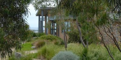Советы ландшафтного фотографа Хелен МакКеррал и ее сад в пейзажном стиле