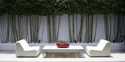 Австралийский стиль в ландшафтом дизайне на Australian landscape design awards 2014
