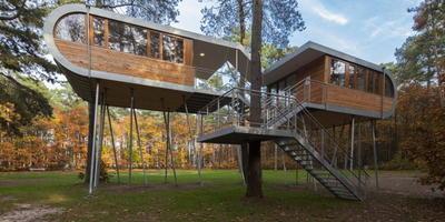 Идея немецких архитекторов — футуристичный деревянный домик на дереве