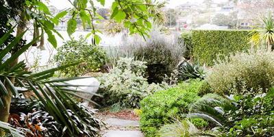 Маленький сад с большим сердцем Линдси Баудинет
