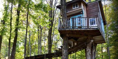 16 оригинальных идей для домиков на дереве
