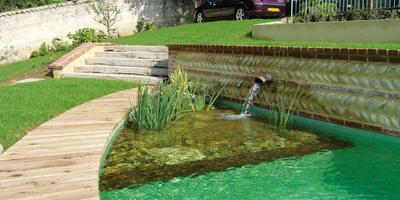 Новый тренд в садовом дизайне — ландшафтные бассейны