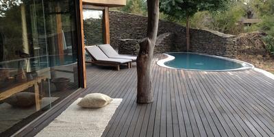 Ландшафтный дизайн в стиле африканского сафари