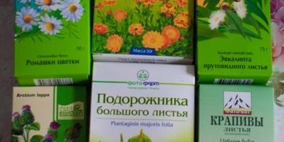 А у меня на даче не сорняки, а лекарственные средства