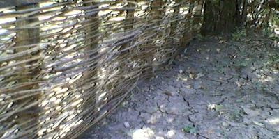 Плетни на даче