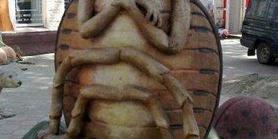 44 способа избавиться от колорадского жука