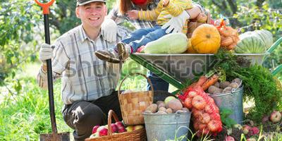 Стартовал конкурс Урожай-2015