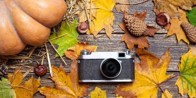 Стартовал XI этап конкурса дачных фотографий