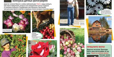 """Фотографии победителей - в 10 номере журнала """"Дом в саду""""!"""
