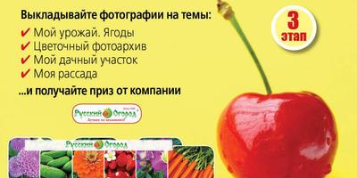 Конкурс фотографий в нашей группе ВКонтакте - начался III этап!