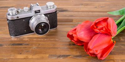 Поздравляем победителей XV этапа конкурса дачных фотографий!