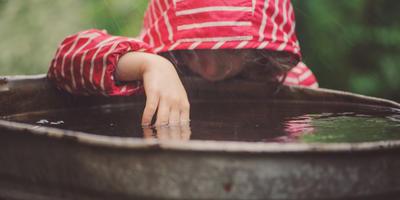 Как вы поливаете растения на огороде - проточной водой из шланга или только отстоянной?