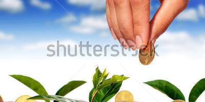 Семена и посадочный материал какого производителя вам понравились больше всего?